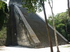 25mar2011 横に設置された急な木造階段を上る
