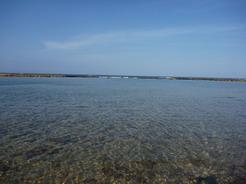 6apr2011 エルメルの連れてってくれた静かなビーチ