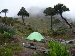 6jun2011 標高4000m付近のテン場 山頂部はガスって見えない