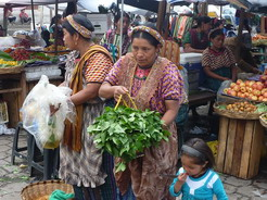 8jun2011 野菜や果物が売られている