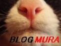 にほんブ<br />ログ村 猫ブログへ