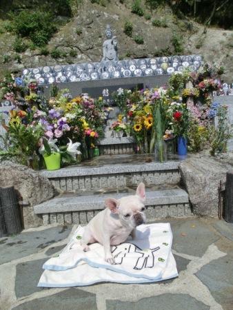 共同墓地の前で