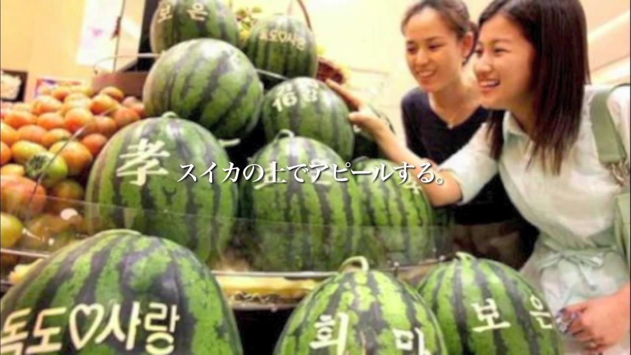 ニュース(韓国)_20111026_韓国人にとって特別な場所_07