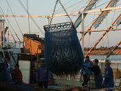20091121海4