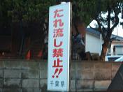 20091121海6
