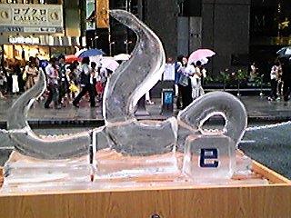 090802蛇