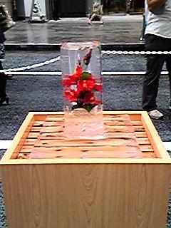 090802赤の花