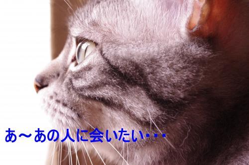 059_convert_20110603013225[1]