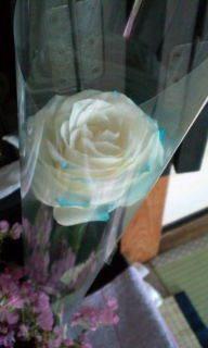 栃木発!☆現代レイキ☆リーディングブレス☆サンキャッチャー☆ベビマ☆天然石 Pearl Home-F1000421.jpg