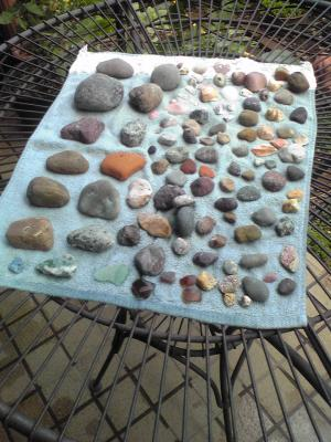 pebbles just picked