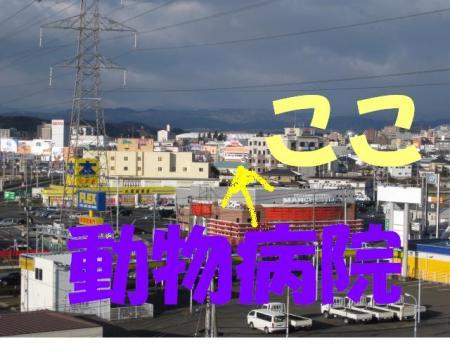 001_convert_20091229114600.jpg