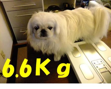 001_convert_20100104085436.jpg