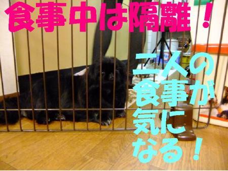 002moka_convert_20100108081954.jpg