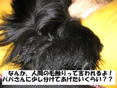 莠コ髢薙・鬆ュ_convert_20091024105237