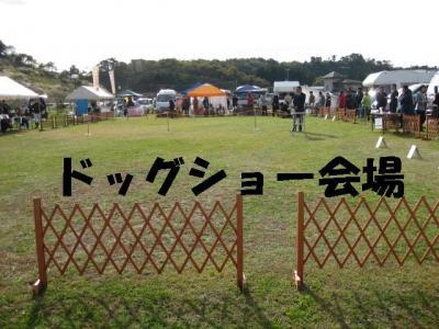 莨壼�エ_convert_20091103120840