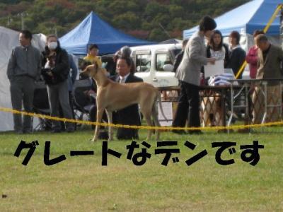 繧ー繝ャ繝シ繝・convert_20091103121212