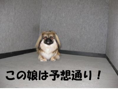 縺薙%縺・01_convert_20091104184539