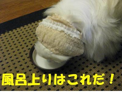 縺ソ繧九¥縺ョ縺ソ_convert_20091106222038