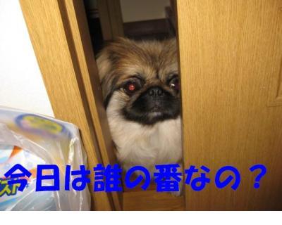 隱ー縺ョ逡ェ_convert_20091106222236
