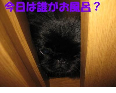 繧ゅ°_convert_20091106222138