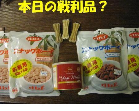 謌ヲ蛻ゥ蜩\convert_20091108171734