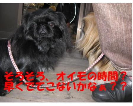 縺翫>繧ゅ・_convert_20091108202711