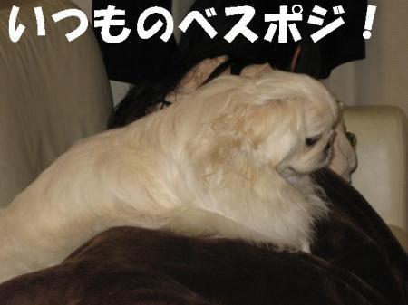 縺ケ繧ケ繝昴ず_convert_20091118100944