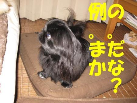 繧ゅ°_convert_20091119102222
