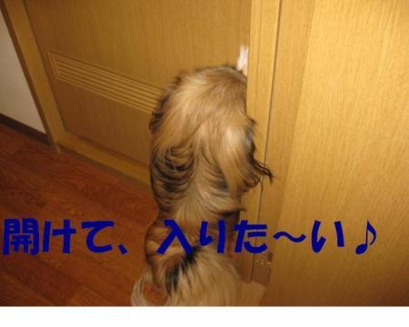 蜈・繧祇convert_20091122094421