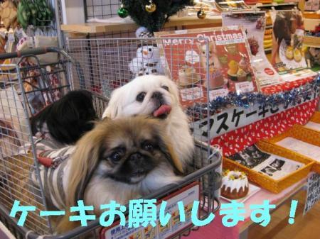 繧ア繝シ繧ュ_convert_20091123093035