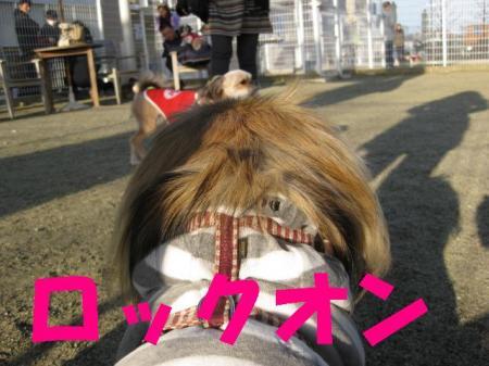 繝ュ繝・け繧ェ繝ウ_convert_20091123093156