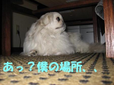 蜒輔・蝣エ謇�_convert_20091126091834