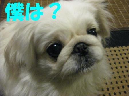 縺ソ繧九¥_convert_20091127082659
