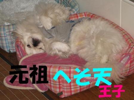 縺ク縺晏、ゥ_convert_20091208090341