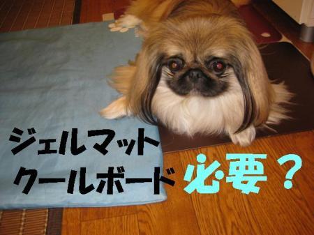 蠢・ヲ\convert_20091215104247