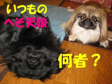 縺ク縺晏、ゥ_convert_20091215103858