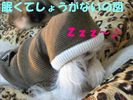 ・コ・コ・コ_convert_20091223084241