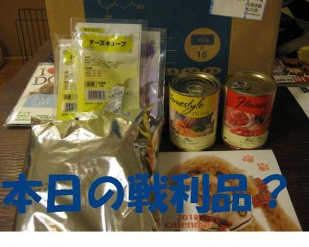 謌ヲ蛻ゥ蜩\convert_20091227213542