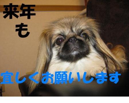 繧医m縺励¥_convert_20091231081629
