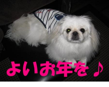 繧医>蟷エ_convert_20091231081611