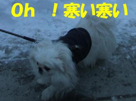 蟇偵>_convert_20100111091207
