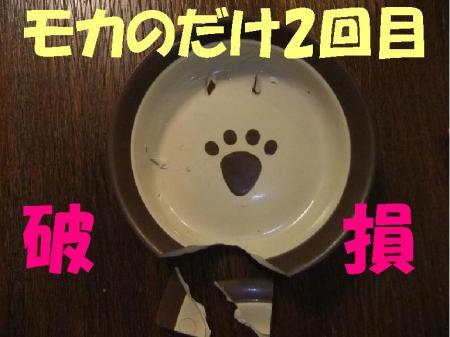 遐エ謳浩convert_20100113103419
