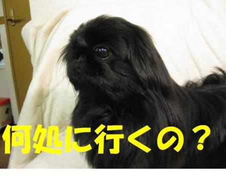 doko_convert_20091227213304.jpg