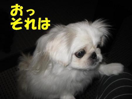 soreha_convert_20091116092414.jpg