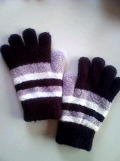 おととい買ってくれた手袋