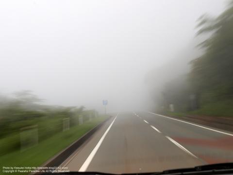 霧の伊豆スカイライン