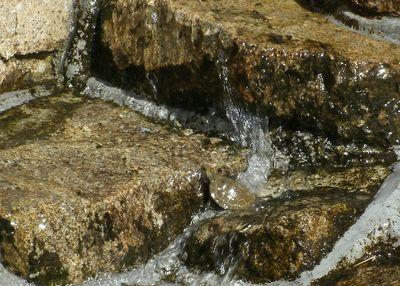 亀の滝のぼり