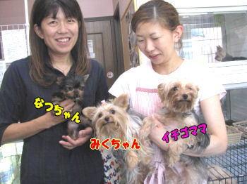 3人親子2