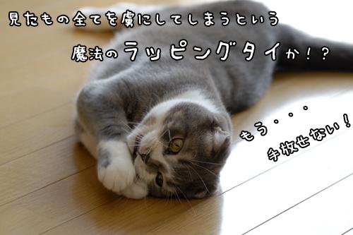 20090920_b