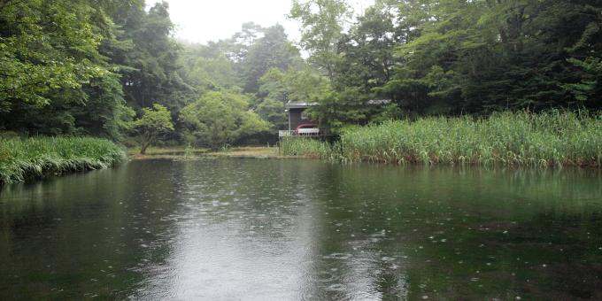 軽井沢ハイク3